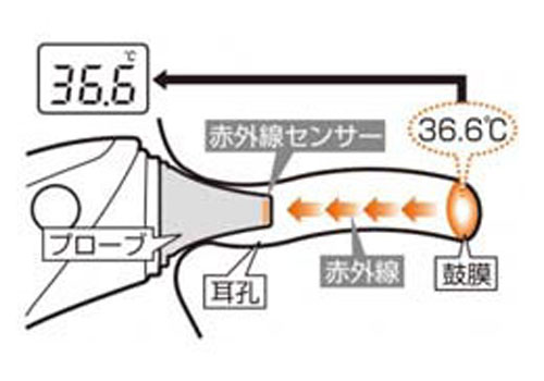 Combi-Baby-Label-digital-ear-thermometer-sensor